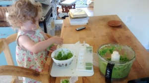 Eleanor fills cubes with chopped garlic scapes and olive oil for the freezer