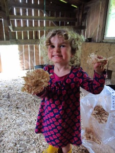 Eleanor adds some shavings (usually more often than necessary)