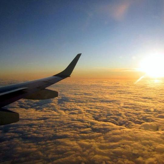 planewing