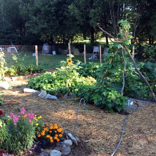 garden-lowwaste