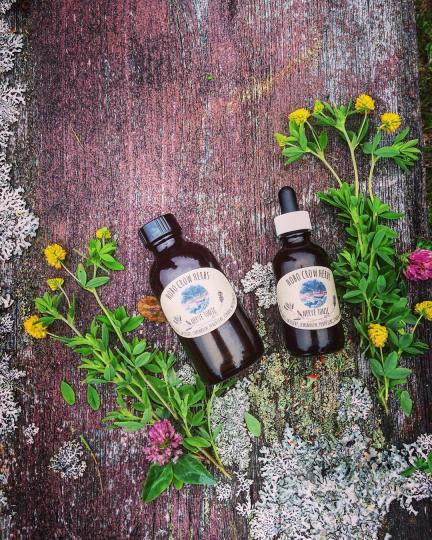 Hobo Crow Wild Food and Medicine Nova Scotia