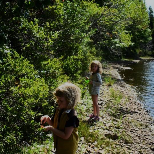 foraging with children